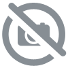 Polo manches courtes Homme CALOSTE/PF rouge/marine